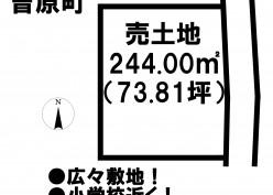 土地情報:津南店 曽原町360